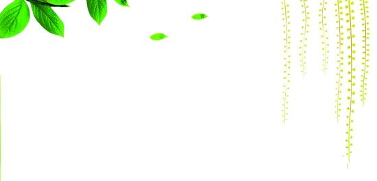 椭圆形边框简笔画内容图片展示